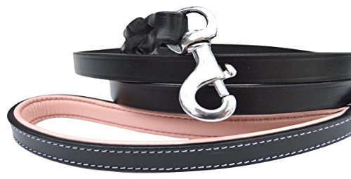 Soft Touch Collars Leather Braided Dog Leash With Padded